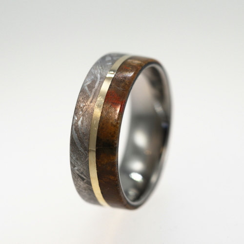 metropoliskingdom:  dduane:  thefatgrackle:  invaderxan:  This is a ring made from dinosaur bone, meteorite, and gold.  I feel like this ring probably has supernatural powers.  And even if it doesn't, it's quite a lovely thing.   Probably expensive as fuck