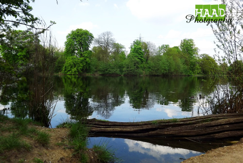 www-haadphotography:  #Lake #London #Log #Photography #Instagram