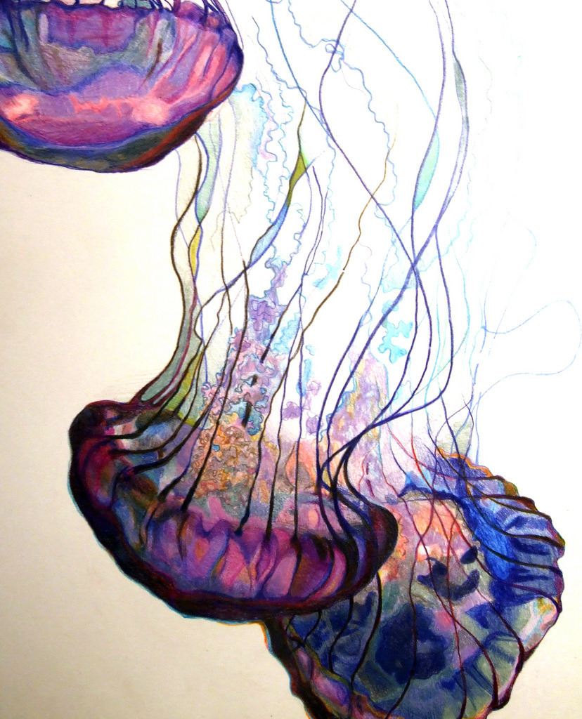 wryer:  Jade Blessinger - Jellyfish, 2009