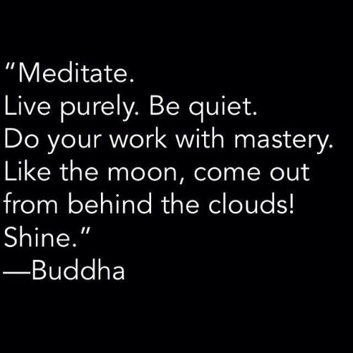 I live by this!🙌🙏👏💪👌👊 #Buddha #Buddhaquote #truth #positivelifestyle #besuccessful #energy