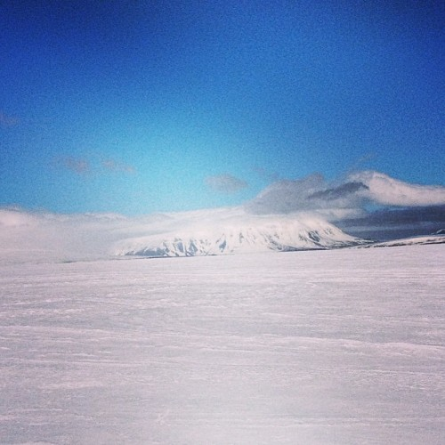 #glacier #iceland #snow #cold #amazing