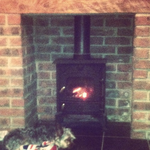 Bentley likes the new fire awrh :3