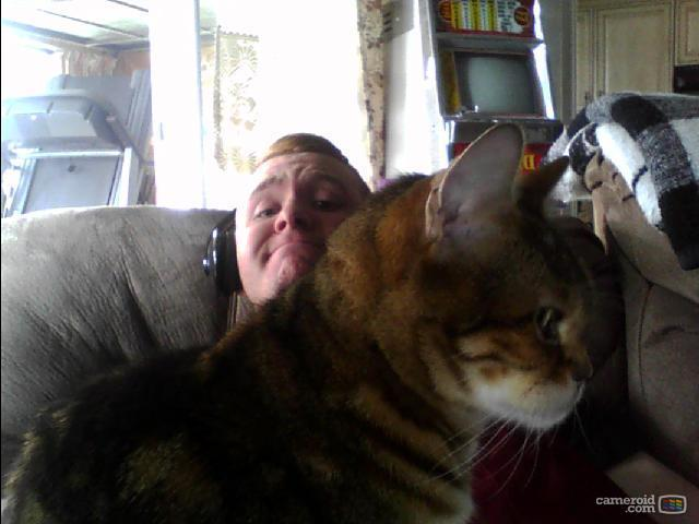 I have been taken over by cat