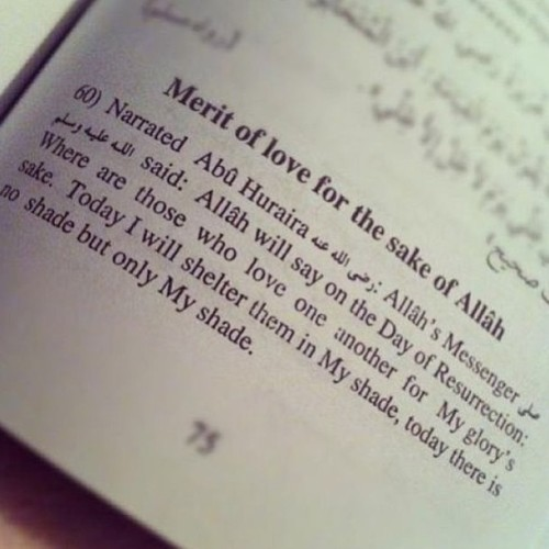 islamicthinking:  Love for the sake of Allah SWT.
