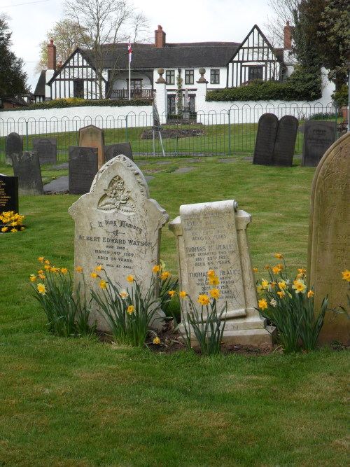 Spring daffodils in St Peters Churchyard, Mancetter, Leicestershire, England All Original Photography by http://vwcampervan-aldridge.tumblr.com