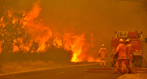 gettyimages:  Bushfires Ravage Victoria Firefighters prepare to defend the Glenmaggie Caravan Park in the large rural region of Gippsland January 18, 2013 near Glenmaggie, Victoria, Australia. Record heat was making conditions ripe for wildfires throughout Australia. Australia's largest city Sydney today posted its highest recorded temperature ever at 114 degrees Fahrenheit. Photo by Michael Clayton-Jones/The AGE/Fairfax Media via Getty Images