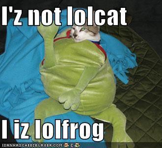 I iz not lolcat, I iz lolfrog
