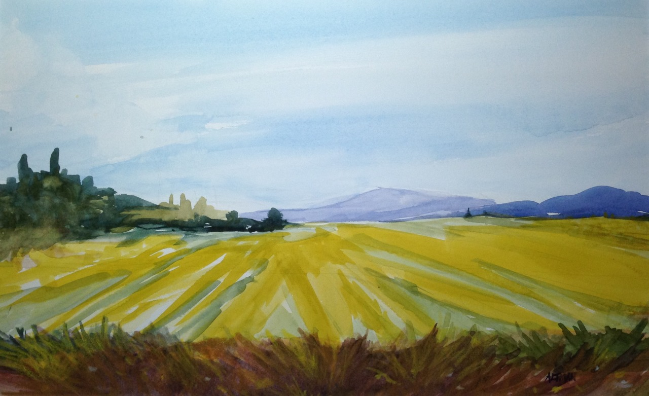 "Artwork of the Day (http://ncpr.org/artwork): ""Mustard Field,"" watercolor. Artist Jacqueline Altman. This work will be on display as part of the solo exhibit ""Mountains and Things"" opening tomorrow, July 4, at the Adirondack Artists Guild in Saranac..."