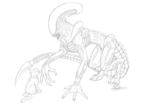 Ahhh I haven't drawn my puppy in so long! This is Obsidian, a Runner Xenomorph whose host was a pit-mix. Right now he's not sure what to make of this kitten, other than it's badly drawn lol sorry about that and sorry for the messy sketch. I made this as a thank-you to a fellow DA user who bought me a premium membership. Thanks to him! Wow the quality here is shitty. Click the link to view it on DA… sorry about that :(