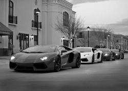Lamborghini lineup! Pick one please!