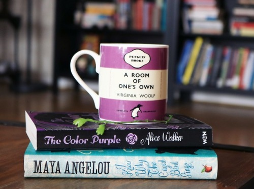 booklr bookshelf the color purple alice walker maya angelou i know why the caged bird sings virginia wolf wolf a room of ones own feminism lbtq poc important books johannathedreamer bookstagram