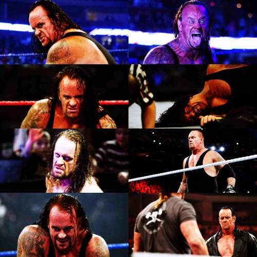 lotusbeauty22:  Undertaker + Emotions