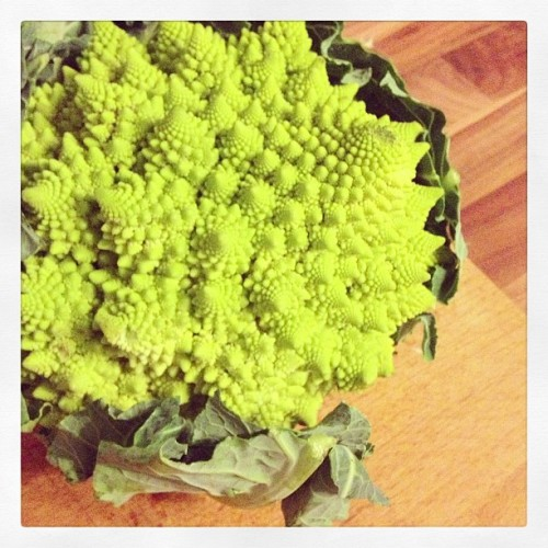 This is a Romanesco … Just that my Dad knows how it Looks like 😜 #greens #veggie #vegan #veggies #vegetable #food #nomnom