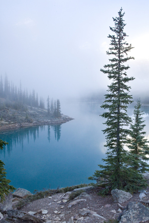 vahc:  Banff National Park - Moraign Lake Sunrise by softclay