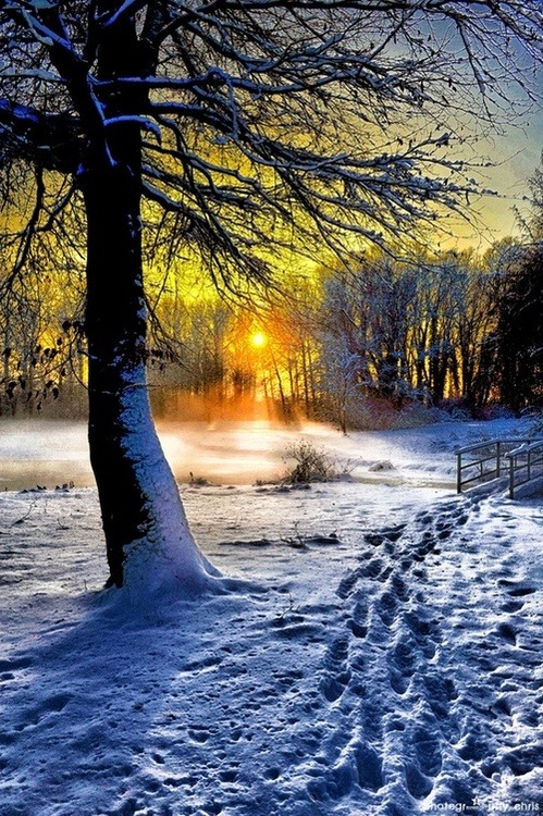 Winter Sunset, Belgium photo via thenational