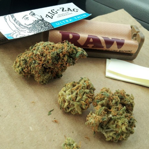 aww-niggy:  Whoops. Today's actually, Day 4: #NugShot. Beautiful picture of some #Red #Congolese bought from #WaterfallWellness. #stonerphotoaday2013 #Dank #ZigZag #RAW