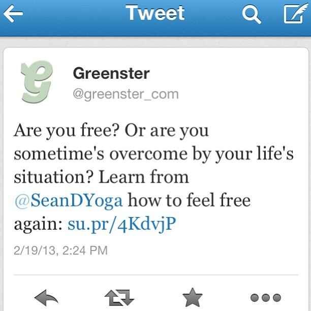 #freedom #yoga @greenster #greenstermag