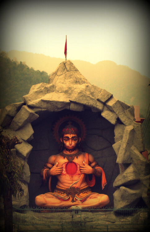 "kampra:  ""A man reaps the fruits of the actions he has performed."" Hanuman, Rishikesh"