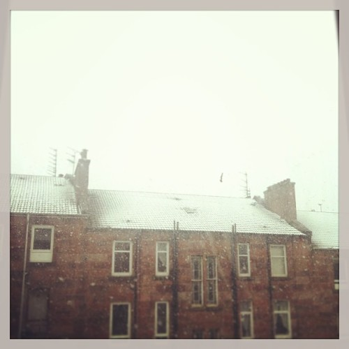 Didn't see this one coming. #snow #weather #iwantsummer #glasgow #snowstorm #bringontheholiday