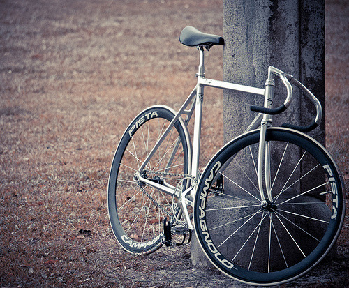 titsandtires:  fixieporn:  Radials the new Aerospoke.  But thank god they look so much better!