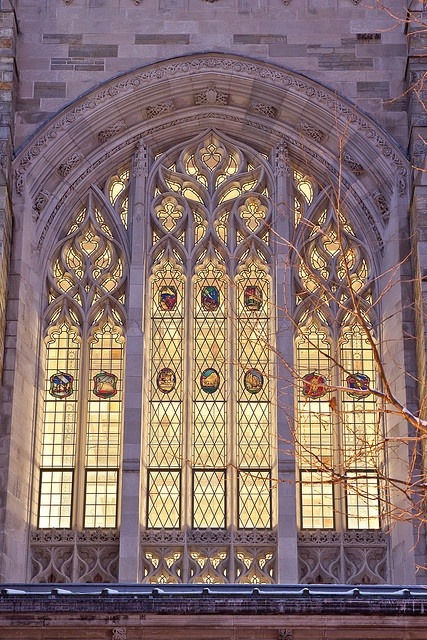 timmytebs:  Window detail at Yale University.