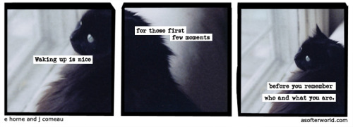 softerworld:  A Softer World: 949 (then what? you have to get up I guess.) buy this print