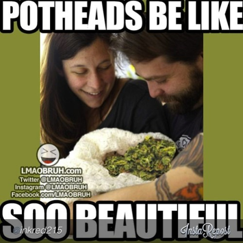 "Had to #wakeandbake with a good laugh (: #webudyou by @inkred215 ""#bud #true #tree#budlove#high #weedporn #weed #earth#sour#piff"" via @InstaReposts"