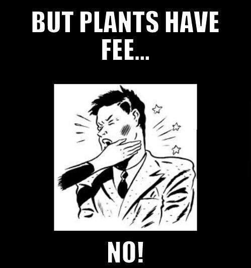 But plants have fee…!