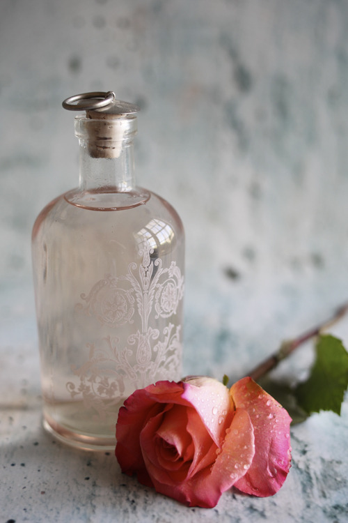 52weeksproject:  DIY Rose Water(via Roost: A Simple Life)