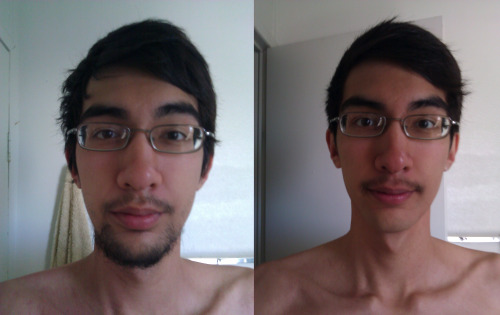 Kind of late. But this was my progress from no-shave-November. I had to shave for my mother's wedding a week ago, so I decided to see what I would look like with only the 'stache.