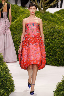 Daiane Conterato for Christian Dior S/S 2013 couture
