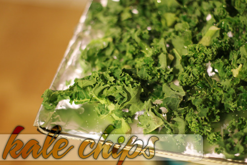 "heartmeanseverythiiing:  KALE CHIPS! Looking for a healthy new snack that actually tastes good? I make these things called ""kale chips"" and it's kale but the way I make them it tastes almost like potato chips! Delicious and healthy! What you need: Kale Oil (I use vegetable, I know there's healthier ones out there.) Salt What you do: Preheat the oven the 350* Line a baking tray with tin foil. Lay pieces of the kale on the baking tray. Take oil (not too much) and drizzle it over the kale, making sure it reaches each piece. Salt them. Not too much, you can always add more later and it's unhealthy. Pop them in the oven for 8-15 minutes (watch it, you don't want it to burn but a little brown is ok) Take them out and enjoy!"