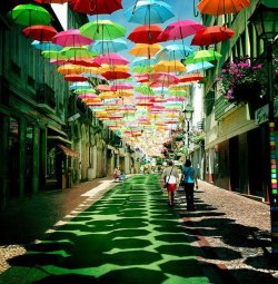 Hundreds of Floating Umbrellas Above a Street in Agueda, Portugal - Imgur