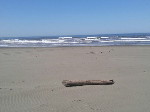 Took a personal day with the bestie. Drove to Ocean Shores. Much, MUCH, needed sun in my system. And I'm feeling a little bit better because of today's adventures.