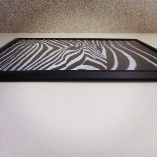 #GoodMorning #Zebra #FavoriteAnimal #WallArt above my bed :o)