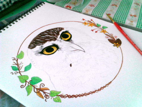 "Work in progress: Postercolour 9""x12"" I love owls!!! :>"