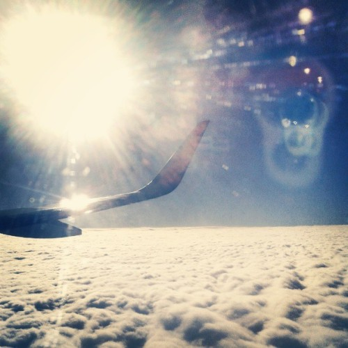 Moment of boredom on the flight home. #travel #plane #clouds #homebound #wanderlust