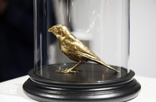 taxidermy-in-art:  Gold Finch, 2012  Gold-plated taxidermy finch by Tom Cookson