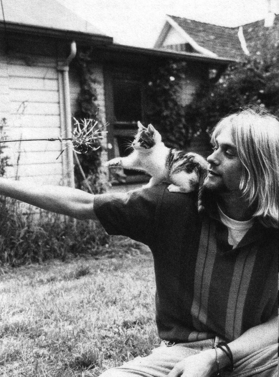 pitchfork:  pbghgirl:  Today is the 46th anniversary of the birth of Kurt Cobain. We didn't have him very long but  what an impact he made.   Mark Richardson writes about Kurt Cobain's journey from being a guy in a band to an idea that keeps cycling through culture in different ways in his latest Resonant Frequency column.