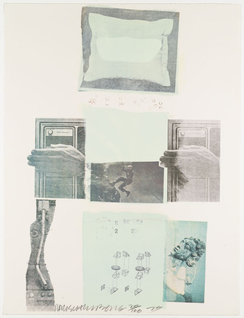 photohandbook:  Robert Rauschenberg Two Reasonds Birds Sing 1979 Screenprint