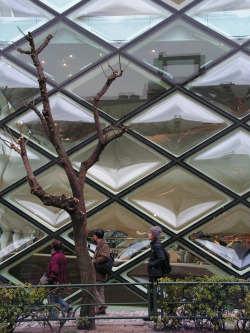 Prada Aoyama, Tokyo [arch. Herzog & de Meuron] Haunt of architects furtively taking photos, and perhaps the odd shopper looking at handbags.