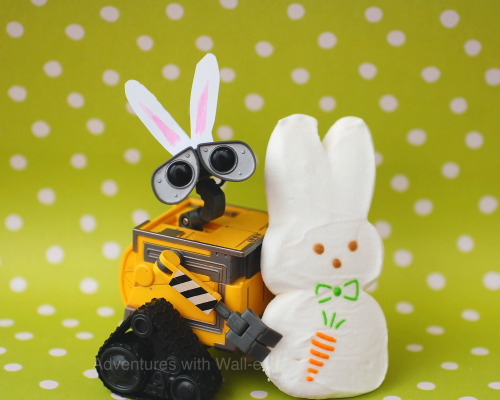 Hoppy Easter, Wall-e!