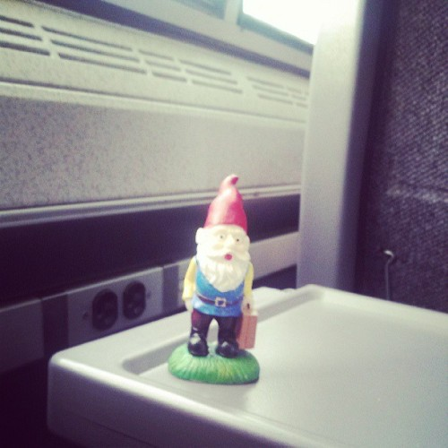 The Roaming Gnome, on the train, nearing NYC