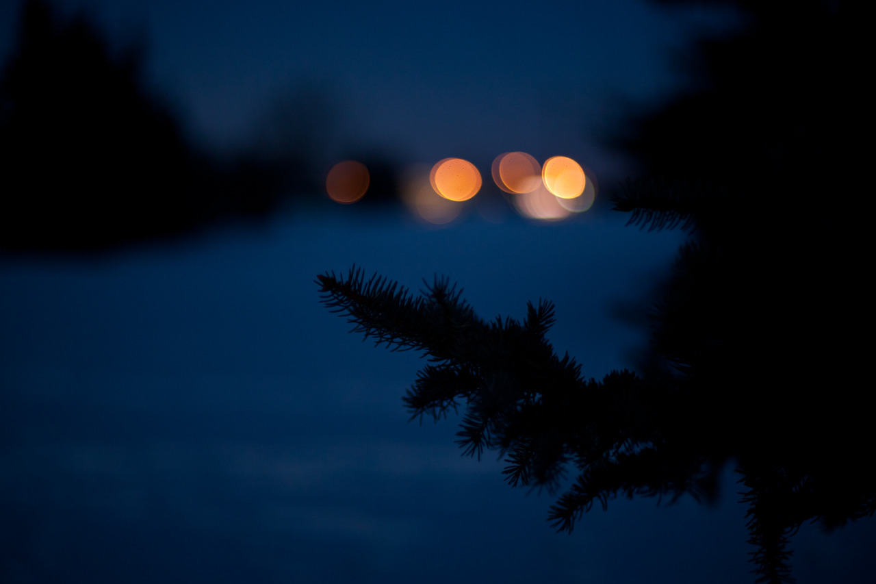 Night bokeh.