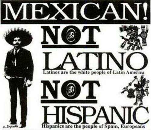 thechinita:  lameraxmera:  👊  bitch u a Mexican , say that shit