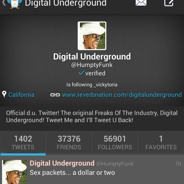 Pause.  Digital Underground follows me ?! **does the humpty dance**