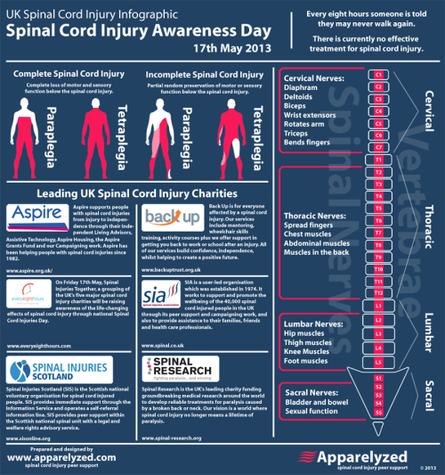 "ninashelby:  spinal cord injury awareness day tomorrow! ""every eight hours someone is told they may never walk again"""
