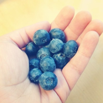digiyesica:  California #organic blueberries straight from the CSA! Snack time! #vegan #whatveganseat #vegansofig #blueberries #veganfoodshare #raw