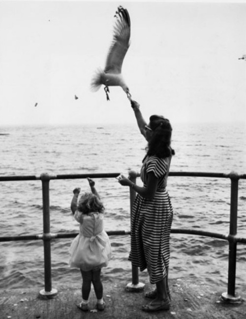 themountainblues:  pureblyss:  gueule-de-loupviolette:  A woman and her 3-year-old daughter feeding seagulls on the promenade during their holiday in St Ives, Cornwall ,1957. © Getty Images.  I really want to go to Cornwall. Sigh.  Oh St.Ives is my favourite place.