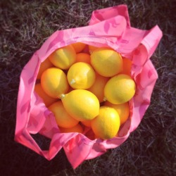 lemon loot